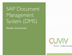 SAP Document Management System (DMS). Introducción. Por Cuviv.