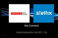 Curso básico de administración de Base de Datos Oracle 11G