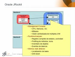 Oracle Fusion Middleware 11g: La Evolucion de Oracle IAS