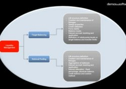 InfoSys. Aplicación Liquidity Management de la solución Finacle