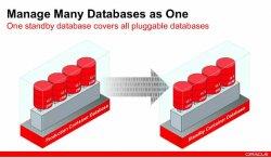 Oracle explica Oracle Database 12c, diseñada para la Nube.