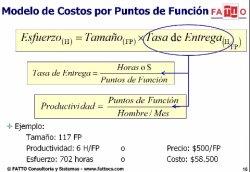 Contratación y gestión de proyectos de software con puntos de función