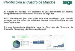 Análisis financiero con Sage XRT Treasury Analysis