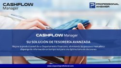Cashflow Manager. Intro y demo.