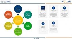 Gestión de Proyectos con Microsoft Navision en la nube