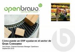Cómo puede ayudar un ERP en el sector de Gran Consumo: la propuesta de Openbravo ERP